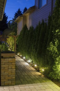 Silver Spring Landscape and Pathway Security Lighting