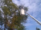 fairfax electrical bucket truck service